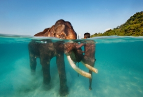 Honeymoon in Andaman and Nicobar Islands